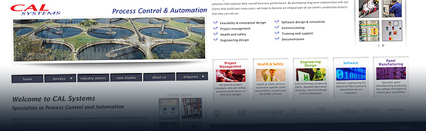 cal systems process control automation