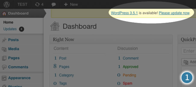 wordpress dashboard please update now